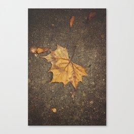 Autumn Leaf Canvas Print