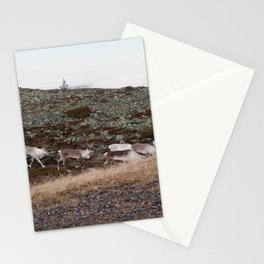 Reindeers on the move Stationery Cards