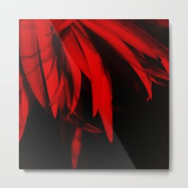 Mysterious Red Metal Print