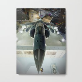 Harrier Metal Print