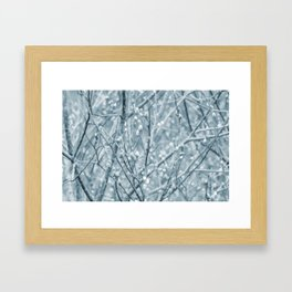 Springtime Pussy Willows Framed Art Print