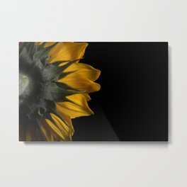 Backside of Sunflower Nature Photo with Brush Strokes Digital Effects Metal Print