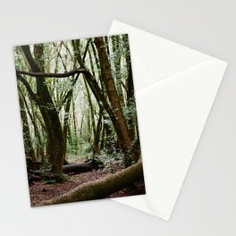 Roy's Redwoods - 35mm film Stationery Cards