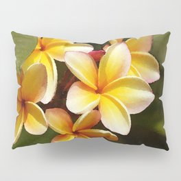 Elegant Simplicity is the Hawaiian Plumeria Pillow Sham
