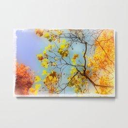 Autumn Bright Day Fine Art Photograph Metal Print