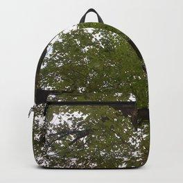Tree and light III Backpack