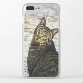 107 - Looking Clear iPhone Case