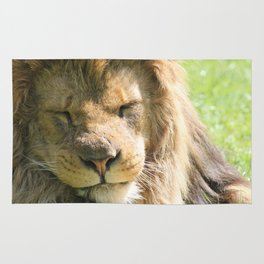 The lion sleeps tonight Rug