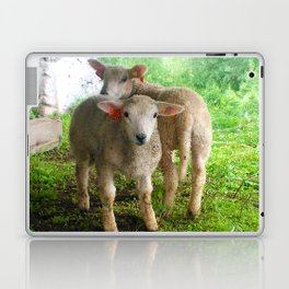 Two small helpers Laptop & iPad Skin