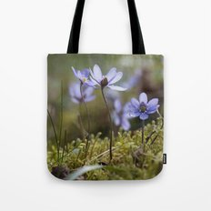 Anemone Hepatica  Tote Bag