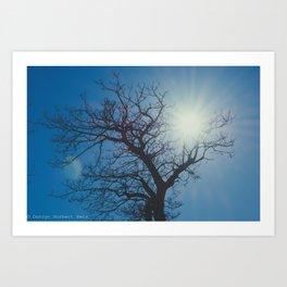Treelouette Art Print