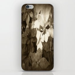 Mixed color Poinsettias 1 Antiqued iPhone Skin