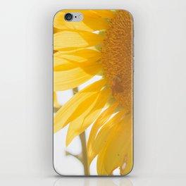 Sunflowers and Sunshine iPhone Skin