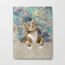 Soft Cat Metal Print