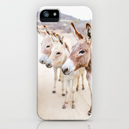 Three Donkeys in Baja, Mexico iPhone Case