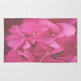 Hydrangea in Pink Rug