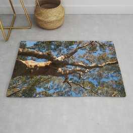 Scribbly Gum Tree Rug