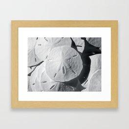 Sea Cookies Framed Art Print