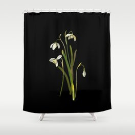 Galanthus Nivalis Mary Delany Delicate Paper Flower Collage Black Background Floral Botanical Shower Curtain