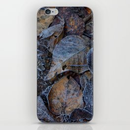 Frost & Leaves2 iPhone Skin