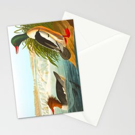 Goosander or Common Merganser Stationery Cards