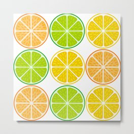 Citrus fruit slices Metal Print