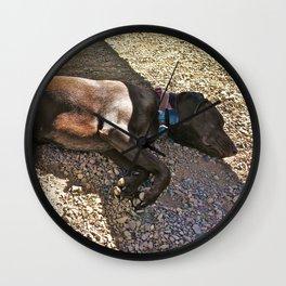 Sleepy Alaska Wall Clock
