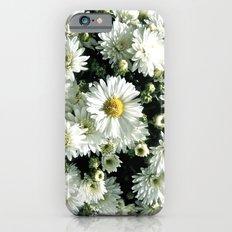 Daisy Dandy iPhone 6s Slim Case