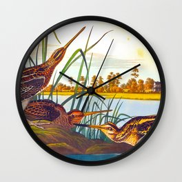 Snipe Duck Vintage Scientific Bird & Botanical Illustration Wall Clock