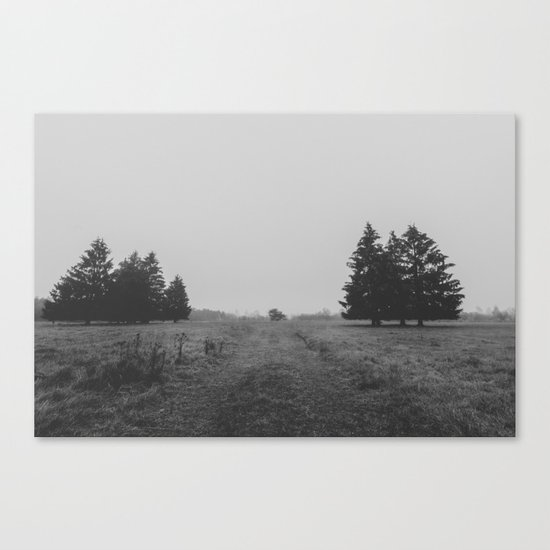 Siblings - black and white landscape photography Canvas Print