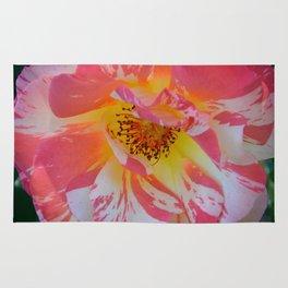 Carnival Rose by Teresa Thompson Rug