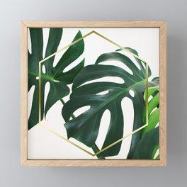 LUXE x Plant Life - Gold white planets lush Framed Mini Art Print