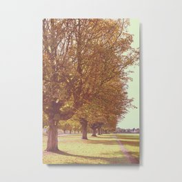 Avenue of Trees Metal Print