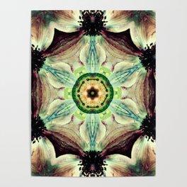 Mystical Evolution Poster