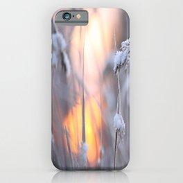Sunny Winter Day #decor #buyart #society6 iPhone Case