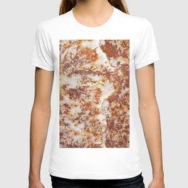 expensive stone T-shirt