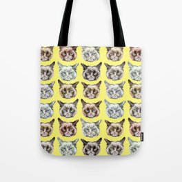 Cats Cats Cats on Yellow Tote Bag