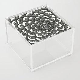 Cosmosis Pine Cone Acrylic Box