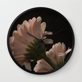 Exotic Pink on Black Gerbera Daisy Petals Wall Clock