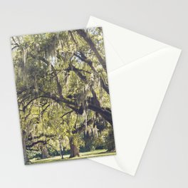 Audubon Park - New Orleans Stationery Cards
