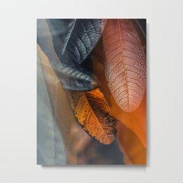 Duet Tas 01 Metal Print