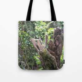 A cyclone damaged tree in the rain forest Tote Bag