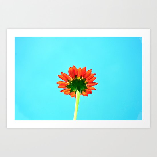 Flower orange 6 Art Print
