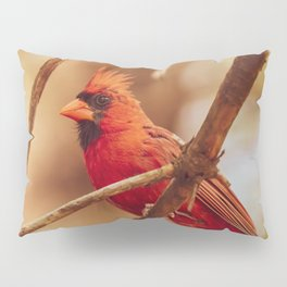 Male Northern Cardinal Pillow Sham