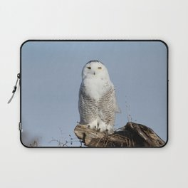 Divinity Laptop Sleeve