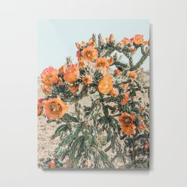 Orange Flowering Cactus Metal Print