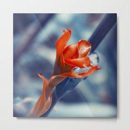 Ginger Flower Metal Print