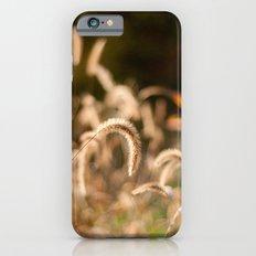 Autumn Light iPhone 6s Slim Case