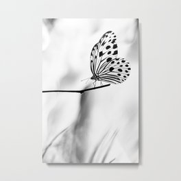 The Paper Kite Butterfly in B&W Metal Print