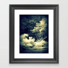 Looking In Framed Art Print